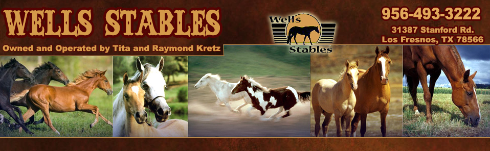 Wells Stables Los Fresnos,Texas